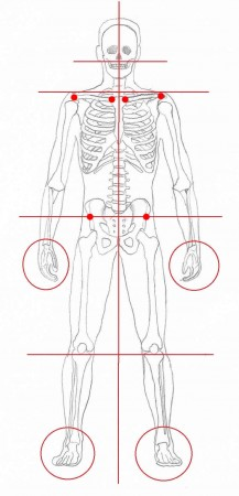 Body alignment anterior view