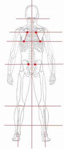 Body alignment posterior view