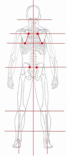 Body alignment posterior view