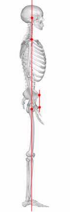 Body alignment side view
